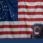 A New Book Teaches Kids About the Life of a Service Dog