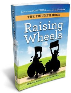 The Raising Wheels book cover. It features two shadows of people in wheelchairs against a grassy and blue-sky background.